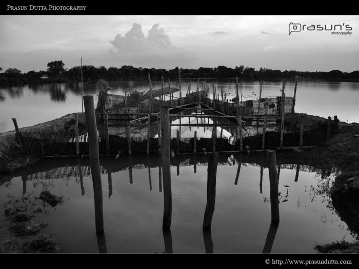 Kharibari Fishery
