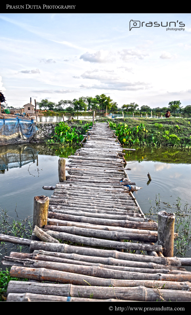 Small Bamboo Bridge