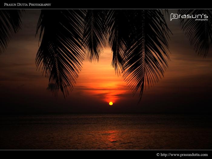 Havlock Sunrise