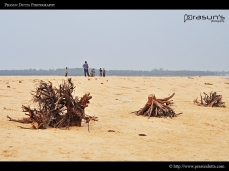 Tajpur Sea Beach
