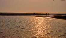 Golden Hour - Tajpur Sea Beach