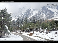 Nice Roads of Sikkim